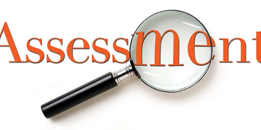 Take the DISC Assessment